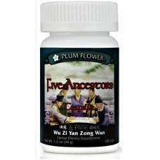Wu Zi Yan Zong, Aka Five Ancestors Tonic, Patent Pill Formula: 8 bottles = 60 day supply
