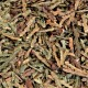 Ce Bai Ye (Oriental Arborvitae Leaf) - sold by the pound