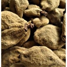 Bi Tao Gan (Fructus Persicae Immaturus) – sold by the pound