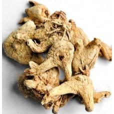 Bai Ji (Bletilla striata) - sold by the pound