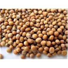 Bai Jie Zi (Semen Brassicae) – sold by the pound