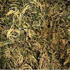Ban Bian Lian (Chinese Lobelia Herb) – sold by the pound