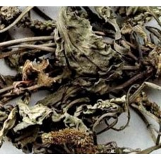 Che Qian Cao (Plantain Herb) - sold by the pound