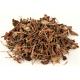 Yu Xing Cao (Herba Houttuyniae) – sold by the pound