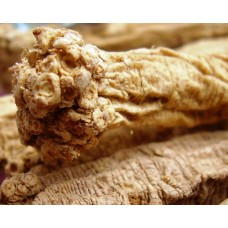 Dang Shen - Large-sized - (Codonopsis Root) - sold by the pound